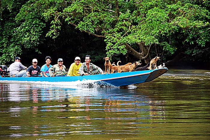 Mulu National Park Boat Ride